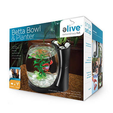 betta-bowl-planter-black
