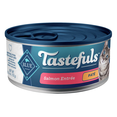 pate-indoor-salmon-entree