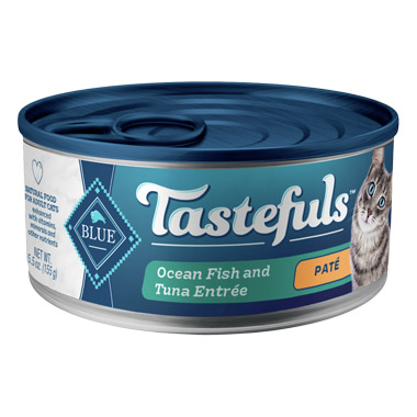 pate-ocean-fish-tuna-entree