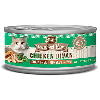 purrfect-bistro-chicken-divan