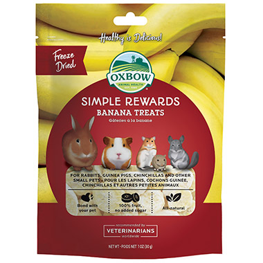 Simple Rewards Banana Treat