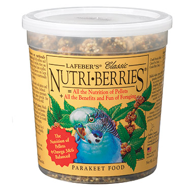 classic-nutriberries-for-parakeets