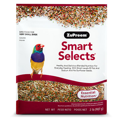smart-selects-canary-finch