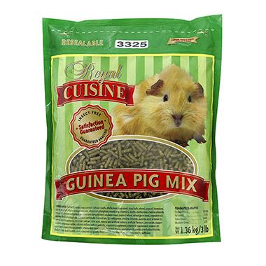 guinea-pig-mix
