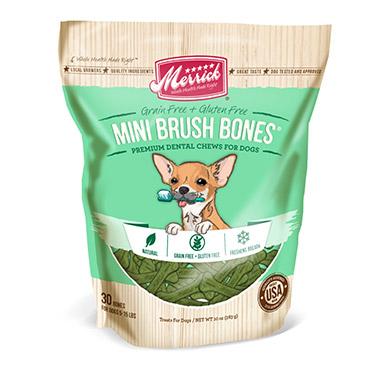 mini-brush-dental-bone