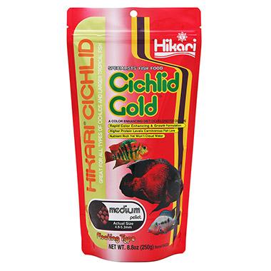 cichlid-gold