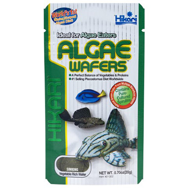 algae-wafers