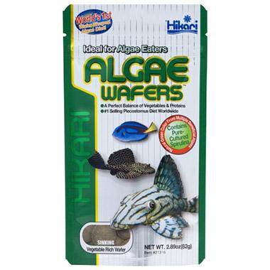 algae-wafers