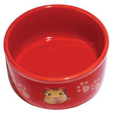 guinea-pig-paw-print-dish