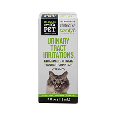 Urinary Tract Infections for Cats