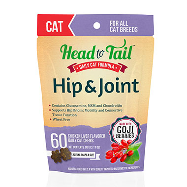 hip-joint-for-cats