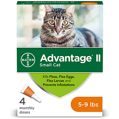 advantage-ii-for-small-cats