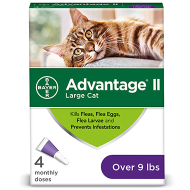 advantage-ii-for-large-cats