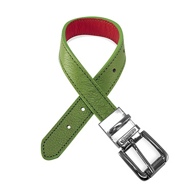 duo-color-leather-dog-collar-green-orange