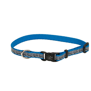 lazer-brite-reflective-nylon-adjustable-dog-collar-turquoise-bones