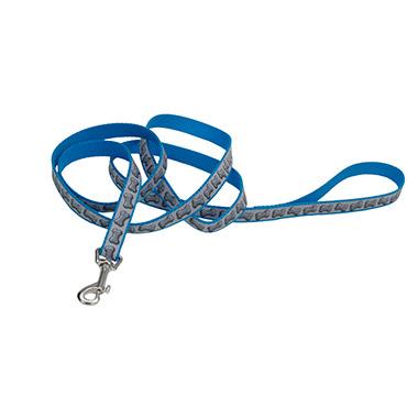 lazer-brite-reflective-nylon-dog-leash-turquoise-bones