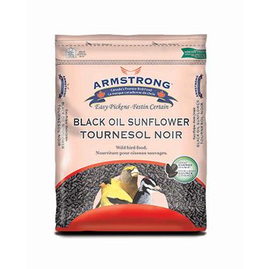 easy-pickens-black-oil-sunflower