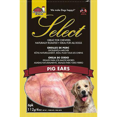 pig-ears