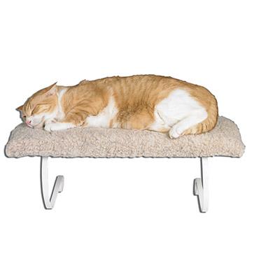 single-cat-window-perch