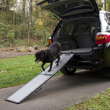 Pet Valu Dog Steps
