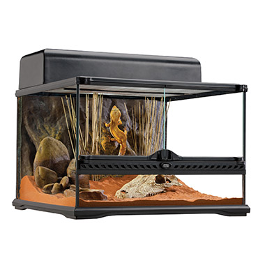 Natural Terrarium - Advanced Reptile Habitat