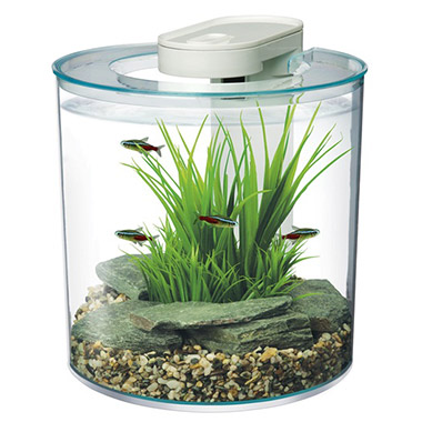 360degree-aquarium