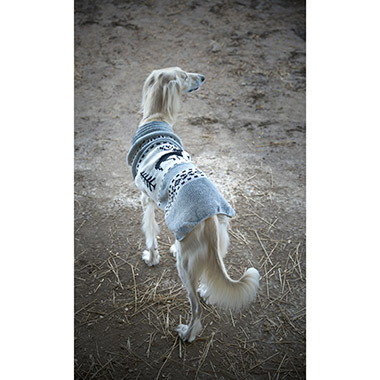 reindeer-shawl-sweater