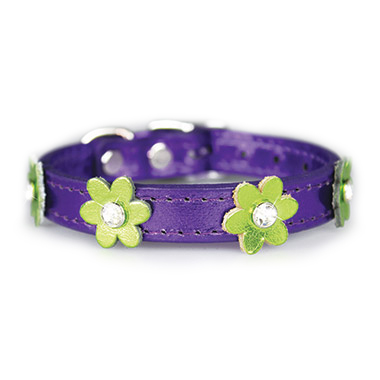 flower-collar-purple