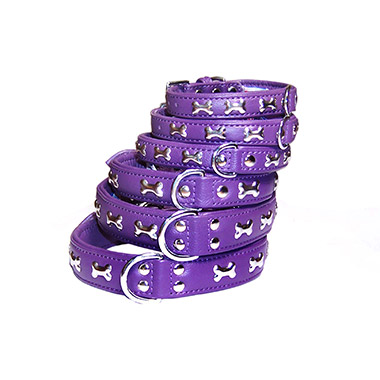 rotterdam-bones-leather-collar-purple