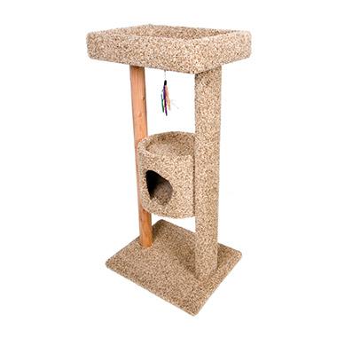 kitty-tree-top-terrace