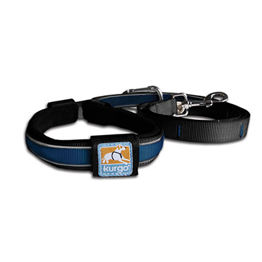 reflect-protect-quantum-leash-blue