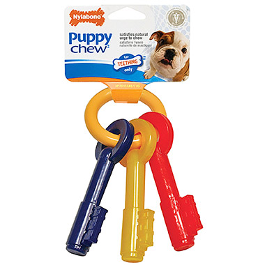 puppy-teething-keys
