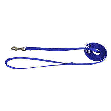 nylon-blue-4ft-lead