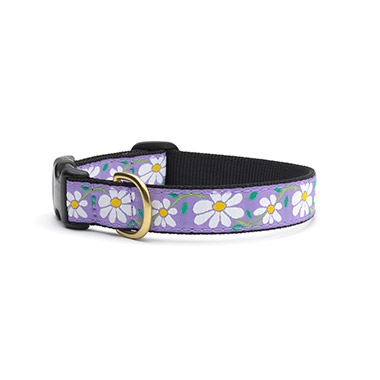 nylon-adjustable-dog-collar-daisy