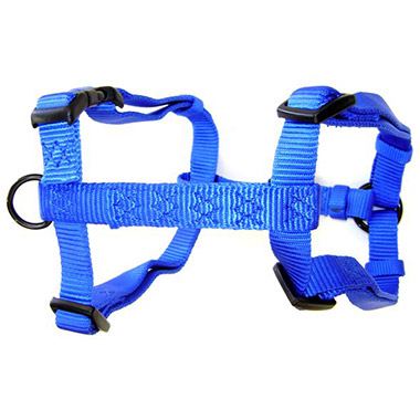 Adjustable Harness Blue