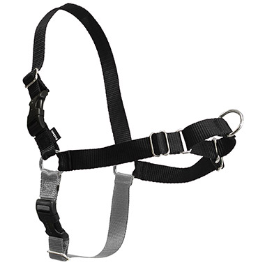 Easy Walk Nylon Adjustable Dog Harness - Black