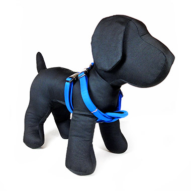 teflon-harness-blue