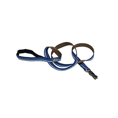 reflective-nylon-scissor-snap-dog-leash-sapphire