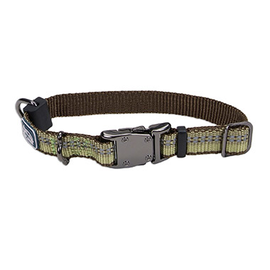 relfective-nylon-adjustable-dog-collar-fern