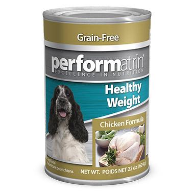 Dog Food Dog