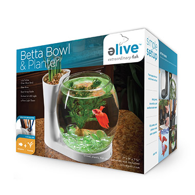Betta Bowl & Planter White