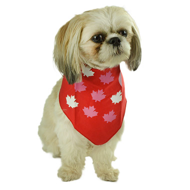 Red Bandana with Maple Leaves & Hearts