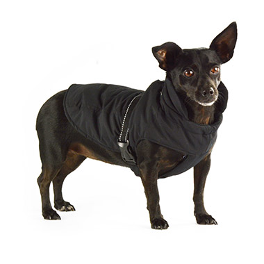 Stretch Chest Black Coat