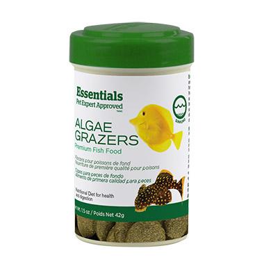 Algae Grazers