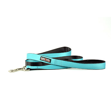 "Nylon Leash - 1"" Blue"