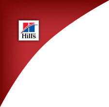 Hill's Science Diet Logo.