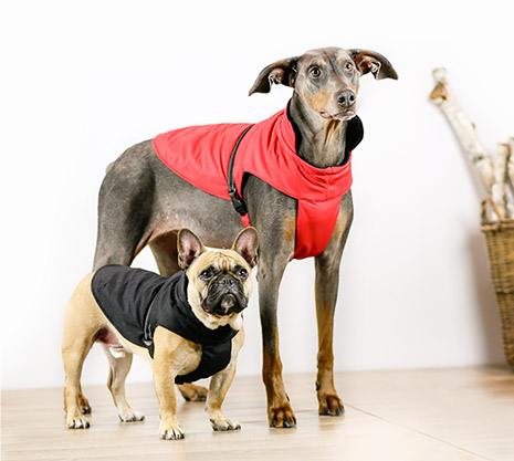 Bailey & Bella Chest Coats
