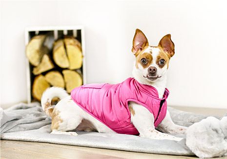 Bailey & Bella Reversible Vest
