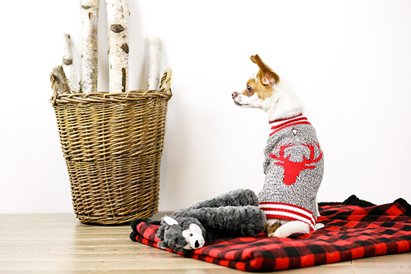 Bailey & Bella Moose Sweater
