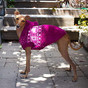 Bailey & Bella Chenille Sweater Pink